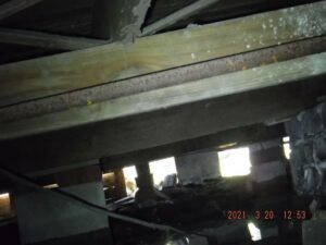 Typical Crawlspace With Wires, Water, Termites, Spiders And More.